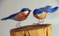 Small Blue Birds